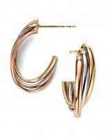 Gecko - Elements, 9ct Yellow/White/Rose Gold Open Earrings