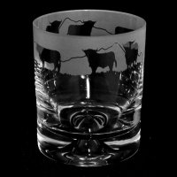 Animo Glass - Frosted Glass Whisky Tumbler, Size 30cl